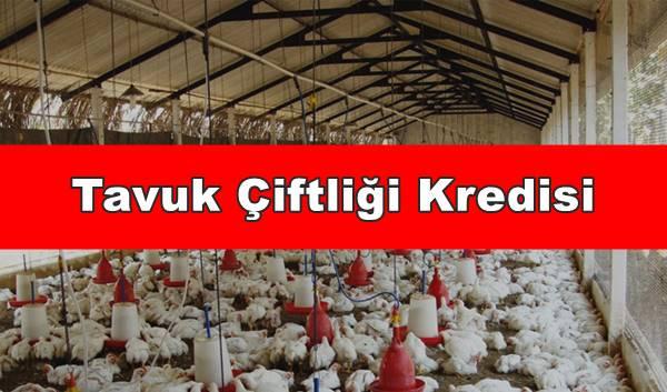 Tavuk Çiftliği Kredisi Veren Bankalar 2020