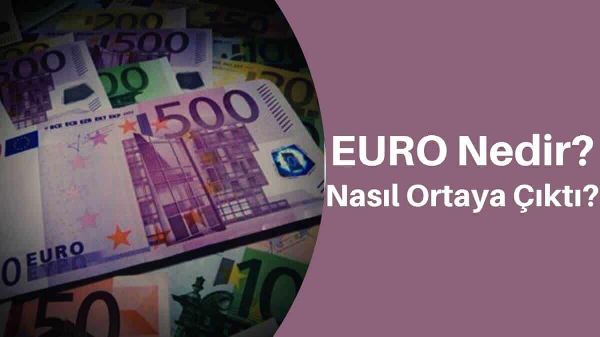 Euro Nedir? Nasıl Ortaya Çıktı? Neden Kullanılıyor?